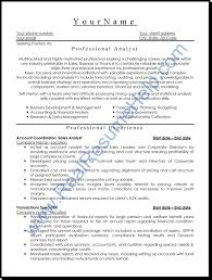 Sample Information Technology Resume by Professional Info On Resume Free Resume Example And Writing Download