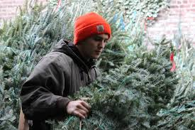Decorated Christmas Tree Delivery Nyc by The 12 Hour Day Of Your Friendly Neighborhood Christmas Tree