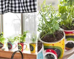 Window Sill Herb Garden Designs How To Grow Herbs Indoors