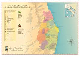 Map Of Italy Wine Regions by Marche Wine Regions Map Cellartours