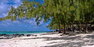 veranda palmar escape to the east from veranda palmar colours mauritius