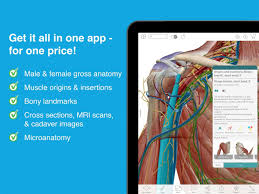 What Is Human Anatomy And Physiology Human Anatomy Atlas 2017 Android Apps On Google Play