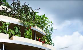 Open Balcony Design Space10 Creates An Open Source Growroom You Can Build At Home Ikea