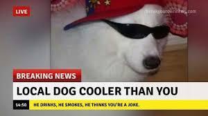 Breaking News Meme - breaking news album on imgur