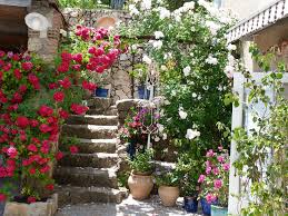 chambre d hote cotignac les fleurs chambres d hôtes les oliviers en provence