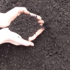 mushroom compost greely sand u0026 gravel compost delivery ottawa
