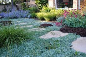 alternatives to grass in backyard lawn alternatives pergolakitsusa com