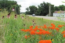 native plantings linn county ia official website