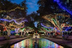 zoo lights houston prices holiday lights in houston best christmas displays neighborhoods