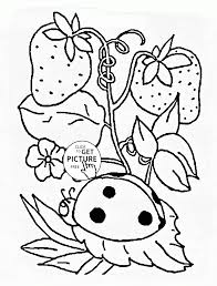 ladybug on the strawberry plant coloring page for kids seasons