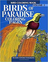 amazon com birds of paradise coloring pages bird coloring book