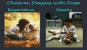 Expectation Vs Reality Meme - i can has cheezburger expectations vs reality funny animals