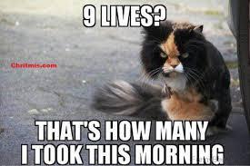 Memes Good Morning - good morning memes