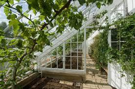 Greenhouse Designs House Plans