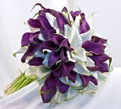 purple lillies geometric signature calla bouquets beautiful calla lilies