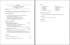 sle resume template entry level sales resume entry level sales resume exles by