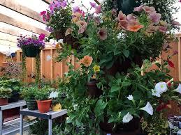 Flowers For Sale Flowers For Sale Hiland U0027s Annual Plant Sale Kicks Off Outside