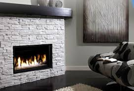 Contemporary Gas Fireplace Insert by Modern Ventless Fireplace Insert Lgilab Com Modern Style House