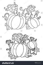 halloween line drawings black white line drawings pumpkins growing stock vector 226258879