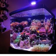 Floating Aquascape Reef2reef Saltwater And Reef Aquarium Forum - 1141 best marinescapes images on pinterest reef aquarium