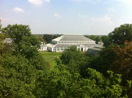 exciting funding news at kew gardens lyndsey clark