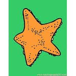 sea star coloring pages 3 u0027sea star u0027 worksheets for kids