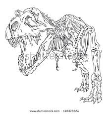 coloring exquisite rex skull drawing wankelskeleton