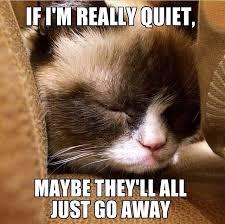 Be Quiet Meme - maybe grumpy cat pinterest grumpy cat cat and memes