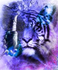 portrait tiger with eagle and butterfly wings color abstract
