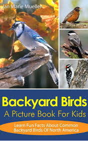 buy backyard birds of north america poster in cheap price on m