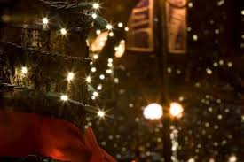lights of livermore holiday tour fort collins outdoor holiday light displays you need to see visit