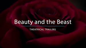 Enchanted Rose That Lasts A Year Beauty And The Beast Disney Movies