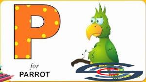 alphabet coloring pages learn letter p p for parrot alphabet