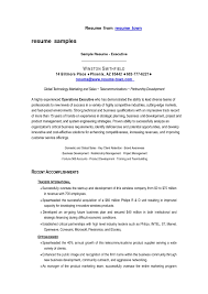 resume format sles resume sle of a marketing executive fresh free downloadable