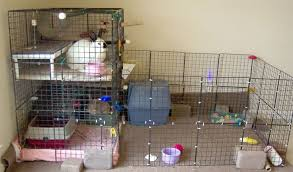 How To Build An Indoor Rabbit Hutch Info On Buying U0026 Building Indoor Rabbit Cages And Hutches For