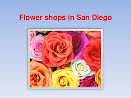 flower shops in san diego flower shops in san diego