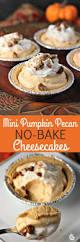 thanksgiving easy treats 354 best thanksgiving images on pinterest pumpkin recipes fall