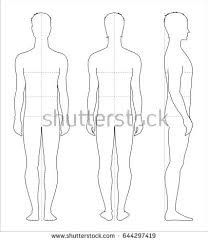 vector illustration womens body proportions measurements stock