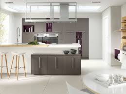 Grey Kitchen Cabinets by Grey Kitchen Cabinets Pictures Stainless Steel Cooker Hood Chimney