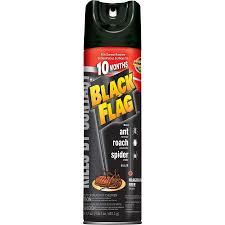 Black Jihad Flag Black Flag In New Jersey A Jihadist Identifier Camouflaged