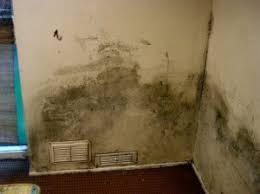 moisissure mur chambre humidistop contre l humidité des murs et la moisissure dans la maison