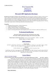 Sample It Resume by Standard Resume Format Business Agreements Client Confidentiality