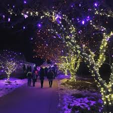 the top 10 winter wonderland experiences around colorado