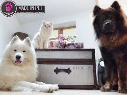 repulsif chien pour canapé produit répulsif canapé best of repulsif chien canapé canape
