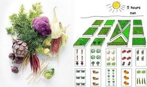 tools to plan your vegetable garden