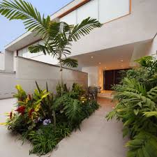 Low Light Indoor Plants by Tropical House Plants Low Light Landscaping U0026 Backyards Ideas