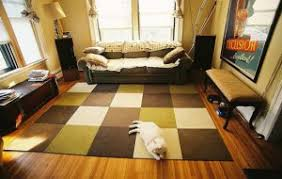 cosy living room rug ideas great small home remodel ideas home