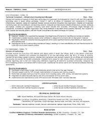 sle cio resume 1 cio resume sle executive sle technology detective case book report puzzle piece mystery book report