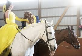 pet tales horses play lead roles in u0027beauty and the beast