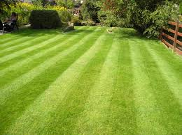 Home Decoration Services Gardening And Lawn Mowing Services Home Decoration Ideas Designing